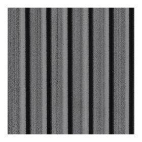 Blacktip® Slate Gray